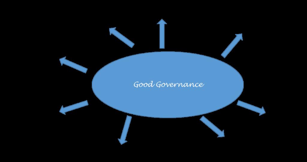 schema passende governance