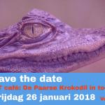 Vrijdag 26 januari 2018 PIT café: De Paarse Krokodil in toezicht